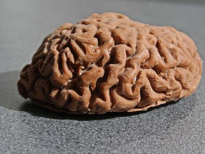 Print a Chocolate Brain!