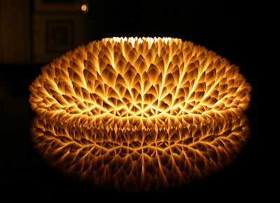 Design of the Week: Chrysanthemum