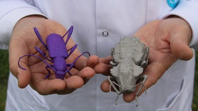 GIANT 3D PRINTED BUGS!