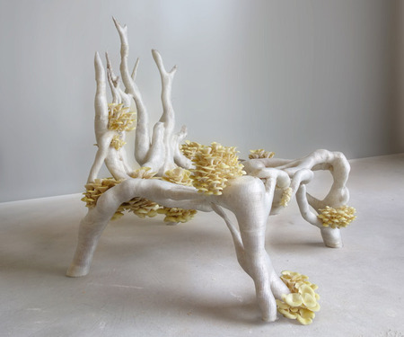 3D Printing a Living Object: Furniture