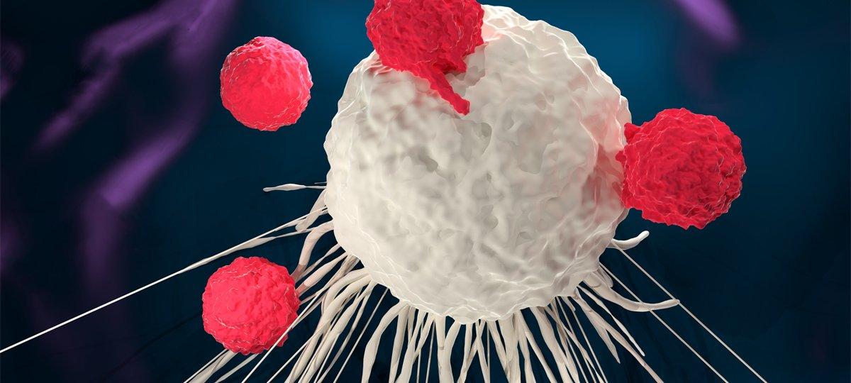 FDA Awards Grants to Bioprinting Institutions