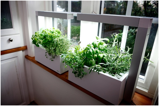 Planting Seeds In 3D Printed Planters Help Us Sprout Into Action