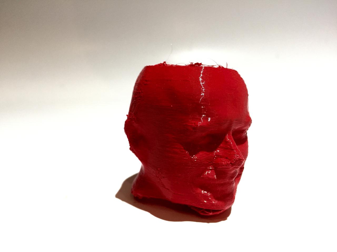 Another Robert Head 3D printed with Fiberlogy's FiberFlex 40D filament