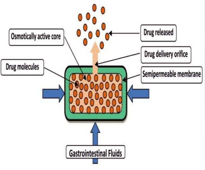 The Osmotic Pressure technique for controlled drug release in medicinal tablets [Source:  Slideshare ]