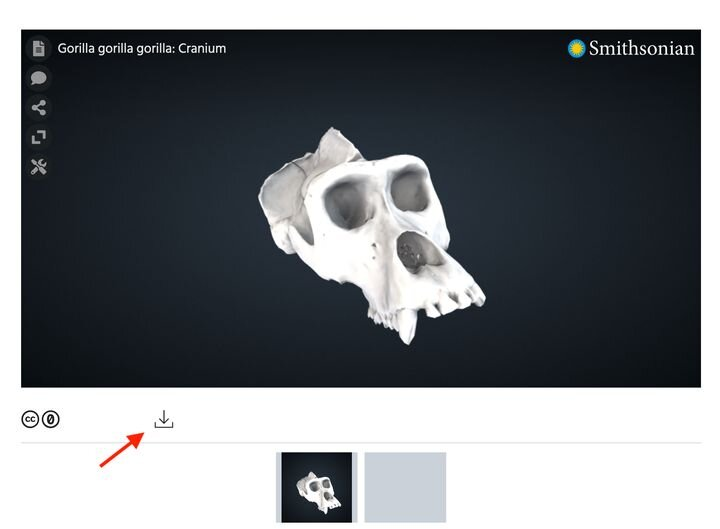 , Hold On, There ARE 3D Models In The Smithsonian's Archive