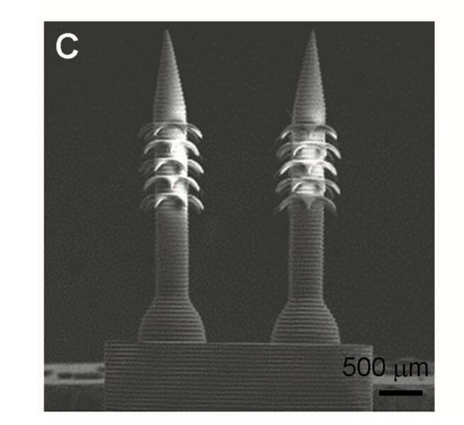 3D printed micro-needles [Source: Wiley]