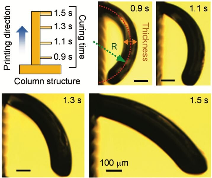 A 4D Printed Microneedle Array