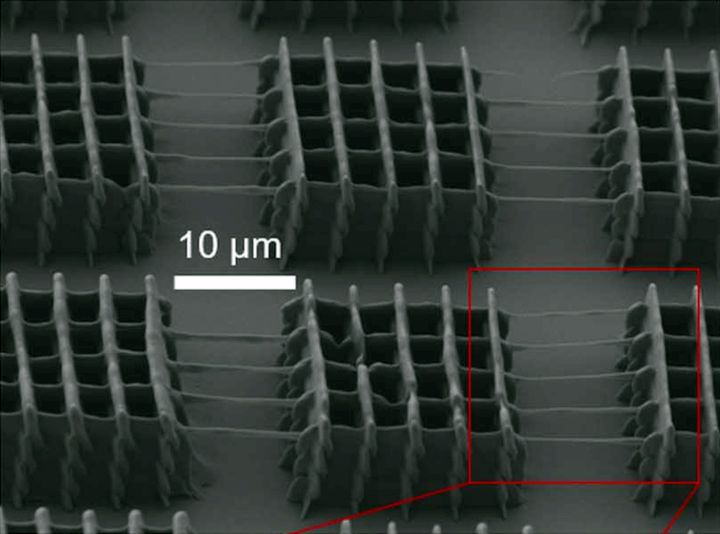 Parallel two-photon lithography orint example [Source: Science]