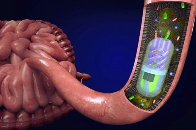 A 3D printed pill can sample the human microbiome. [Source: Tufts University]