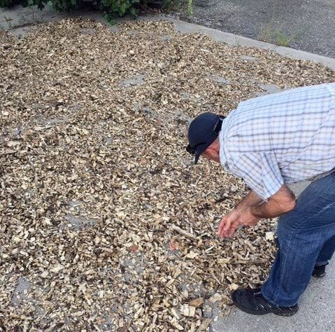 Inspecting dried wood chips [Source: ABC3D]