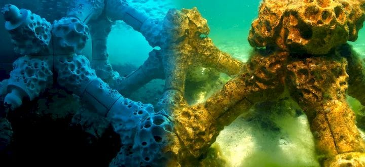 In the Face of Climate Change: Saving Coral Reefs with 3D Printing