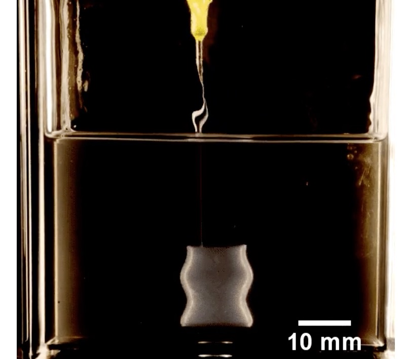 New Gel Could Enable More Complex Living Tissue 3D Prints