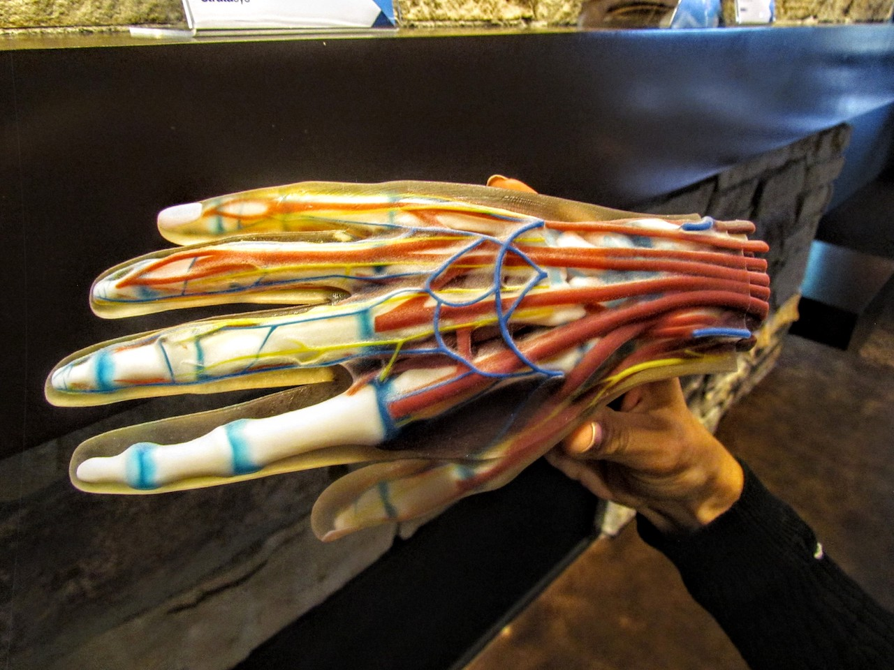 , 3D Printed Hand Replicas – A New Security Concern