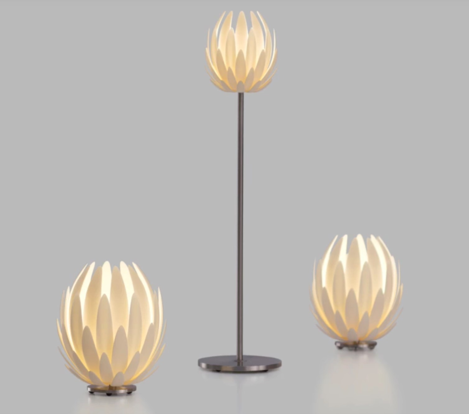 , Design of the Week: Lily Lamp