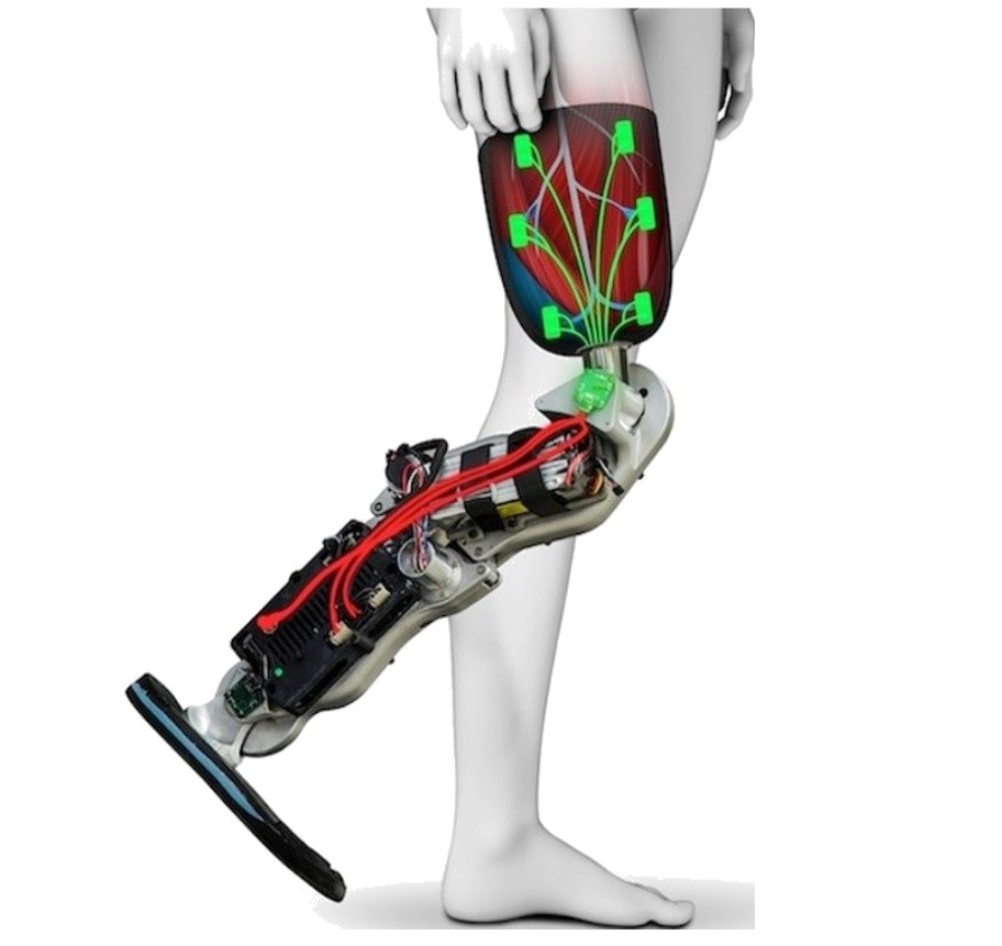 The Symbionica project hopes to produce high-quality prosthetics and bionics