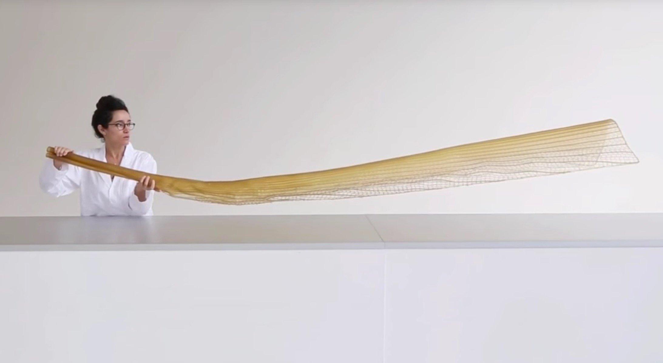 A massive 3D print based on an organic design