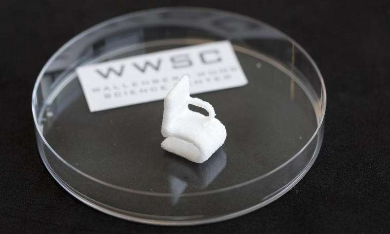 Cellulose Has Been 3D Printed