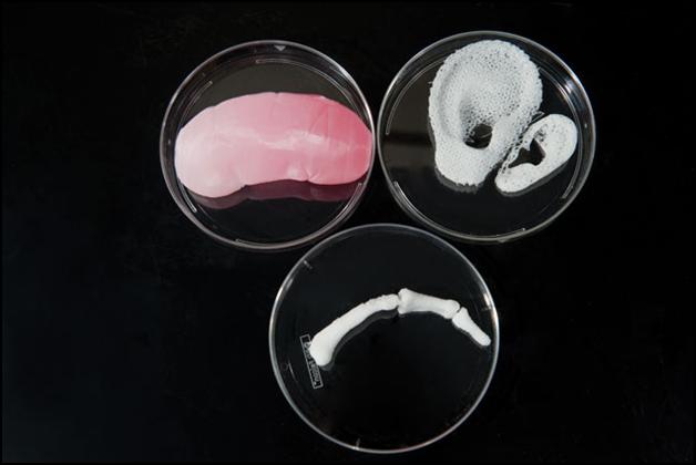 3D bioprinting [Source: Wake Forest Institute for Regenerative Medicine ]